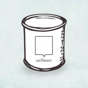 Earthborn Paint