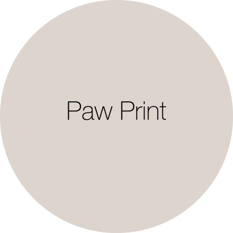 Paw Print - Earthborn Clay Paint