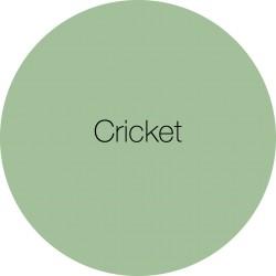 Cricket - Earthborn Clay Paint