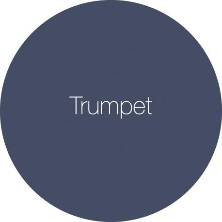 Trumpet - Earthborn Claypaint