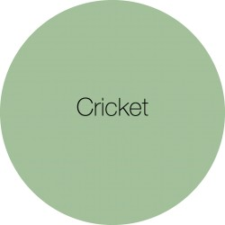 Cricket - Earthborn Eggshell